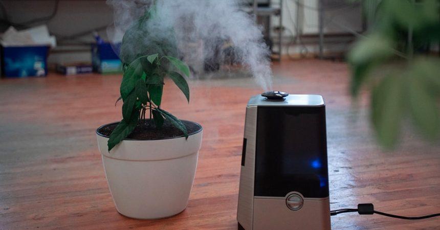 choisir un purificateur d'air