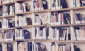 Le top 4 des panneaux de bois pour créer sa bibliothèque !