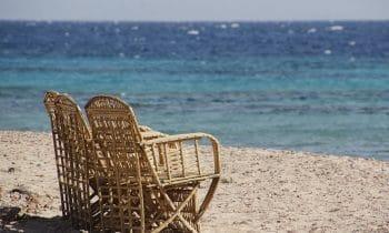 Plongez au coeur du confort et du naturel avec des chaises en osier