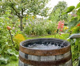 comment stocker de l'eau de pluie