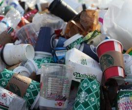 Comment réduire vos déchets domestiques