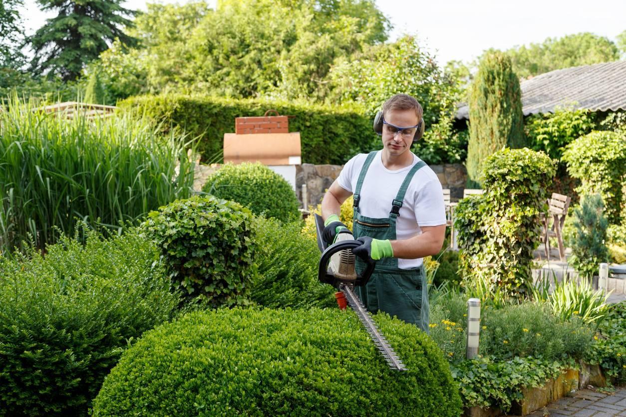 jardinage bons réflexes
